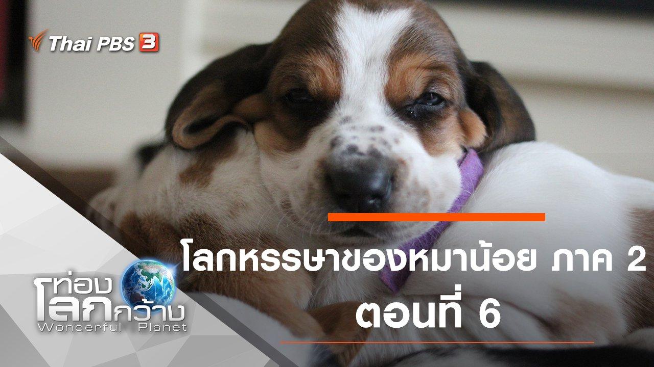 ท่องโลกกว้าง - โลกหรรษาของหมาน้อย ภาค 2 ตอนที่ 6