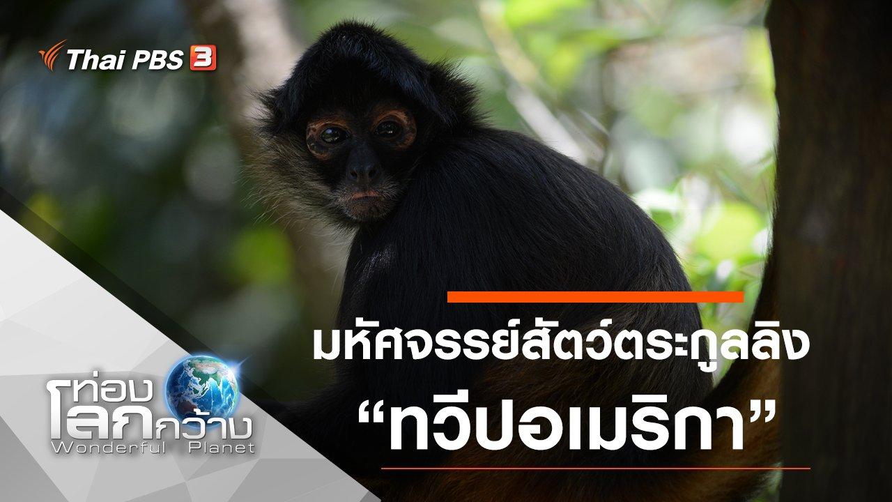 ท่องโลกกว้าง - มหัศจรรย์สัตว์ตระกูลลิง ตอน ทวีปอเมริกา