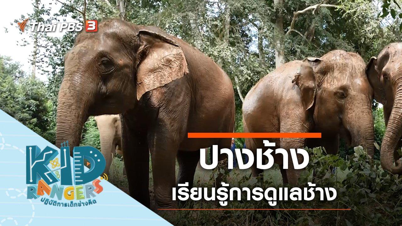 Kid Rangers ปฏิบัติการเด็กช่างคิด - ปางช้าง