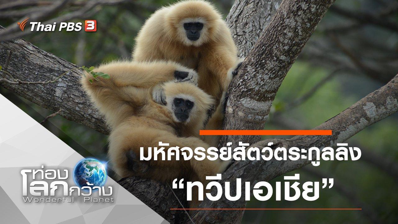 ท่องโลกกว้าง - มหัศจรรย์สัตว์ตระกูลลิง ตอน ทวีปเอเชีย