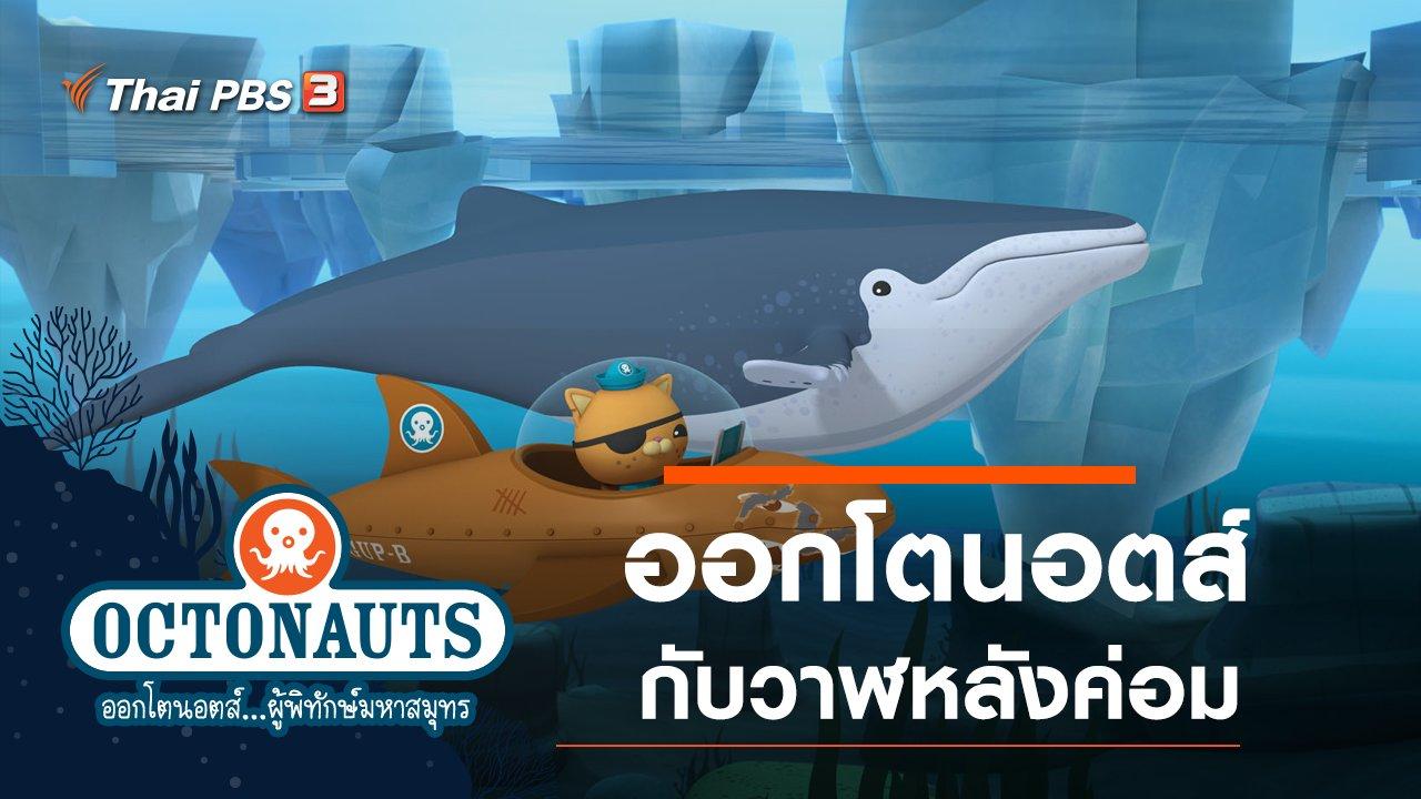 การ์ตูน ออกโตนอตส์...ผู้พิทักษ์มหาสมุทร - ออกโตนอตส์กับวาฬหลังค่อม
