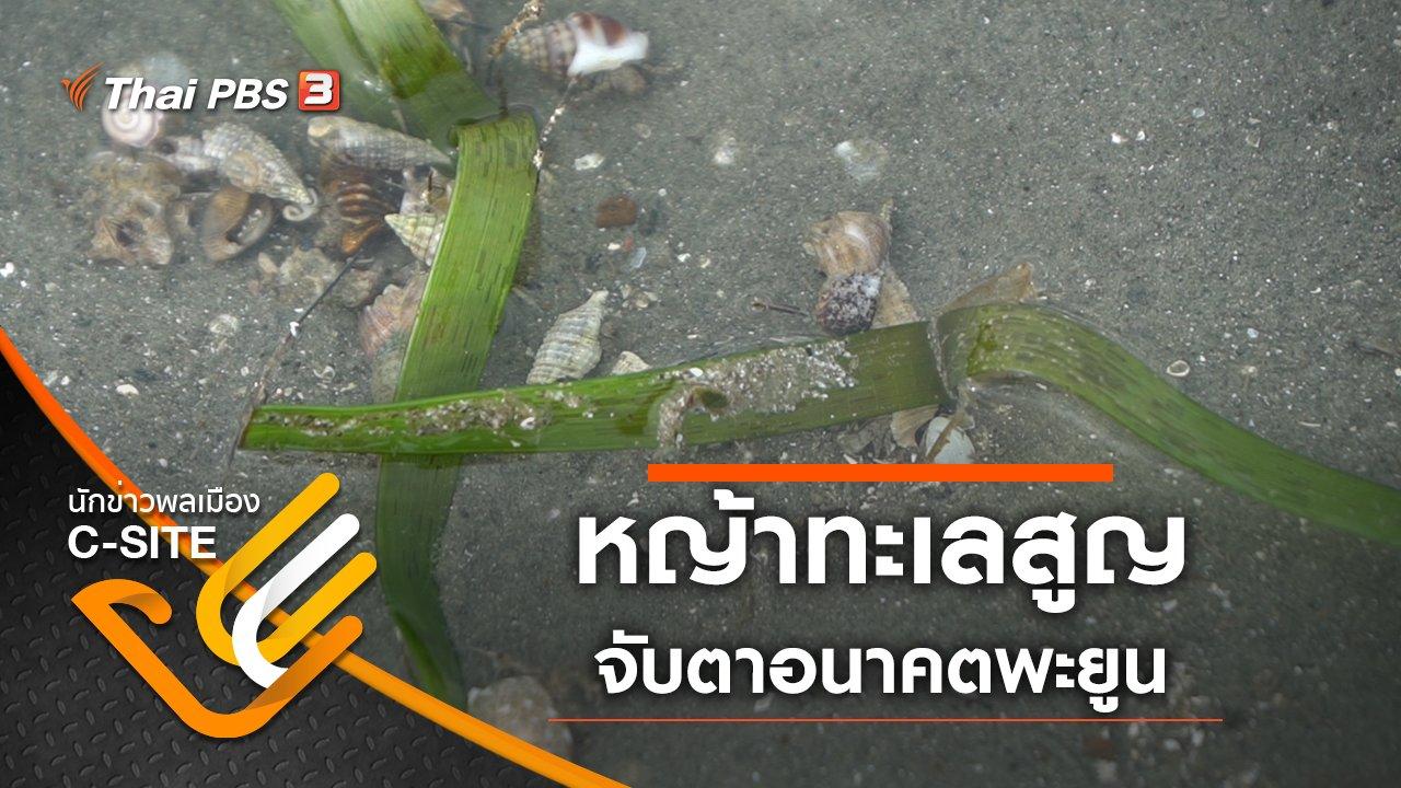 นักข่าวพลเมือง C-Site - หญ้าทะเลสูญ จับตาอนาคตพะยูน