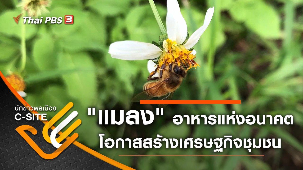 """นักข่าวพลเมือง C-Site - """"แมลง"""" อาหารแห่งอนาคต โอกาสสร้างเศรษฐกิจชุมชน"""