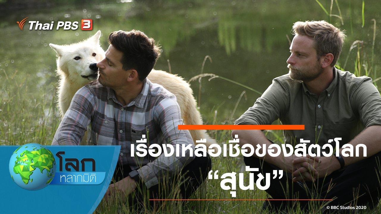 โลกหลากมิติ - เรื่องเหลือเชื่อของสัตว์โลก ตอน สุนัข