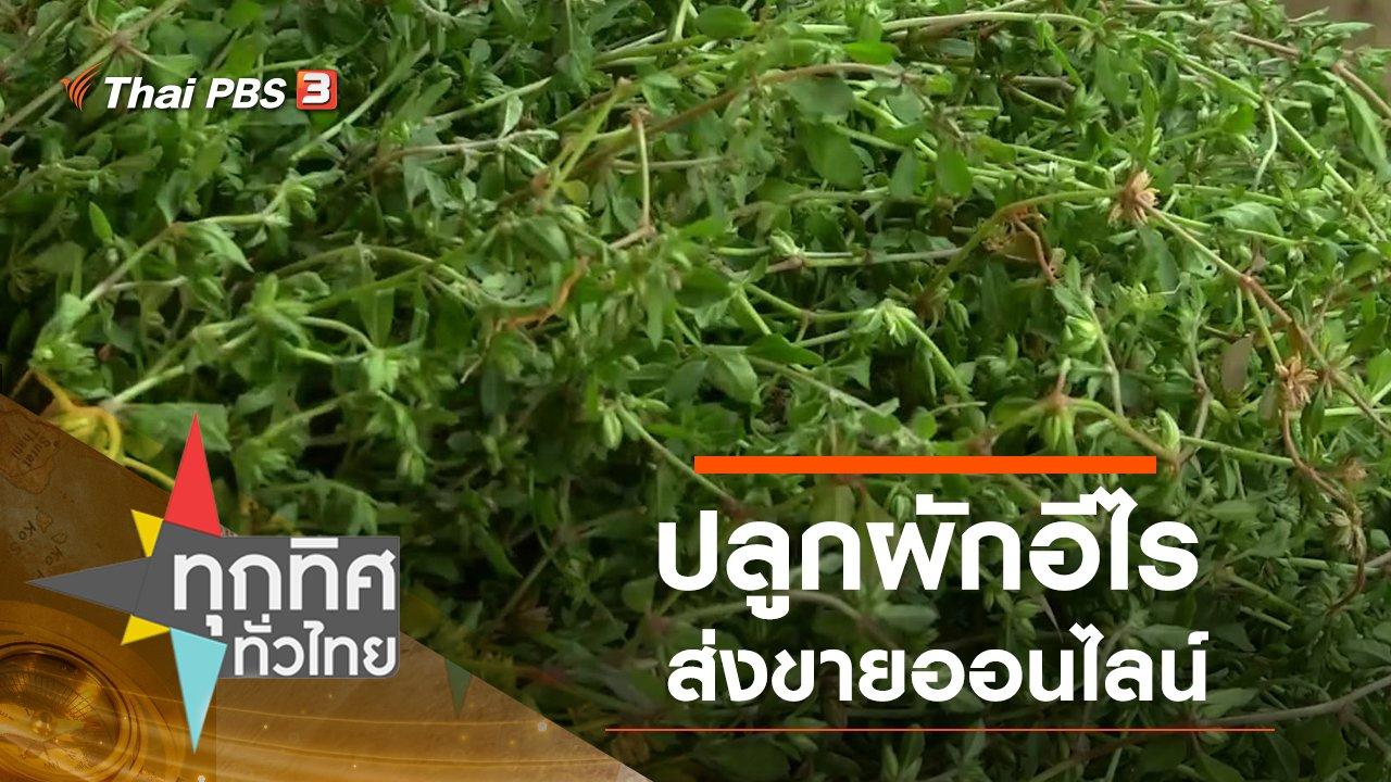 ทุกทิศทั่วไทย - ปลูกผักอีไรส่งขายออนไลน์