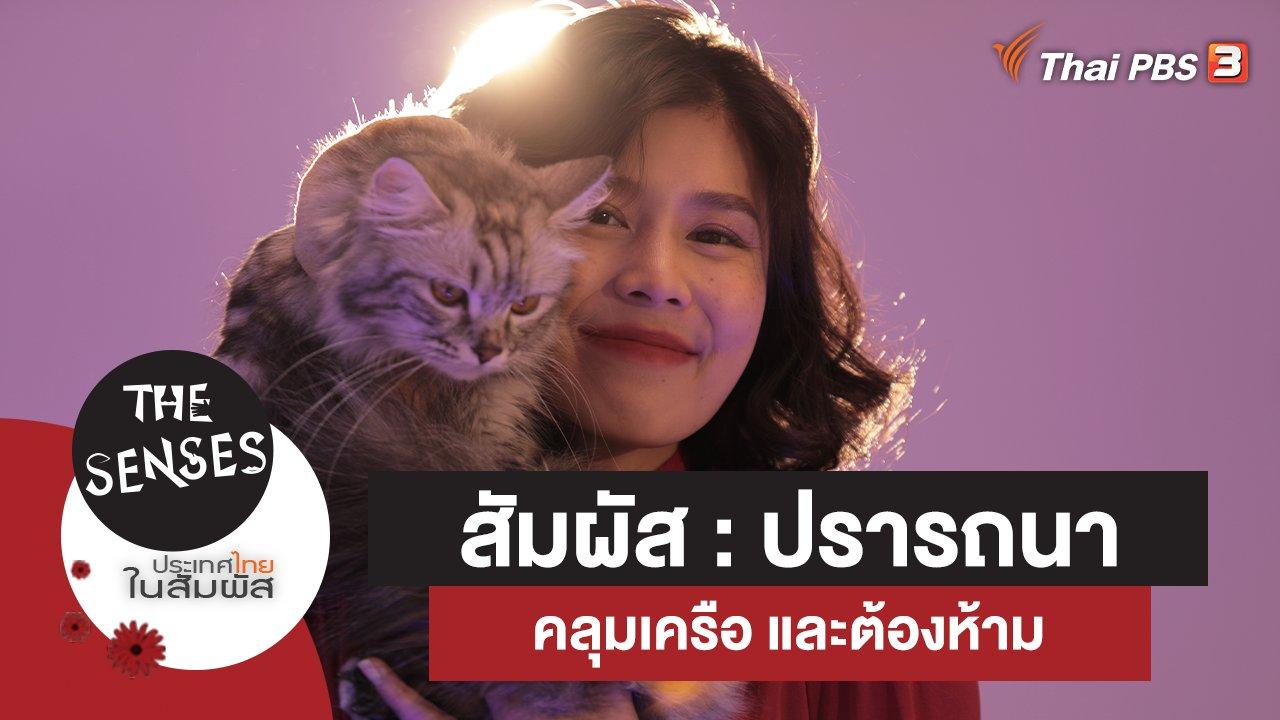 The Senses ประเทศไทยในสัมผัส - สัมผัส : ปรารถนา คลุมเครือ และต้องห้าม