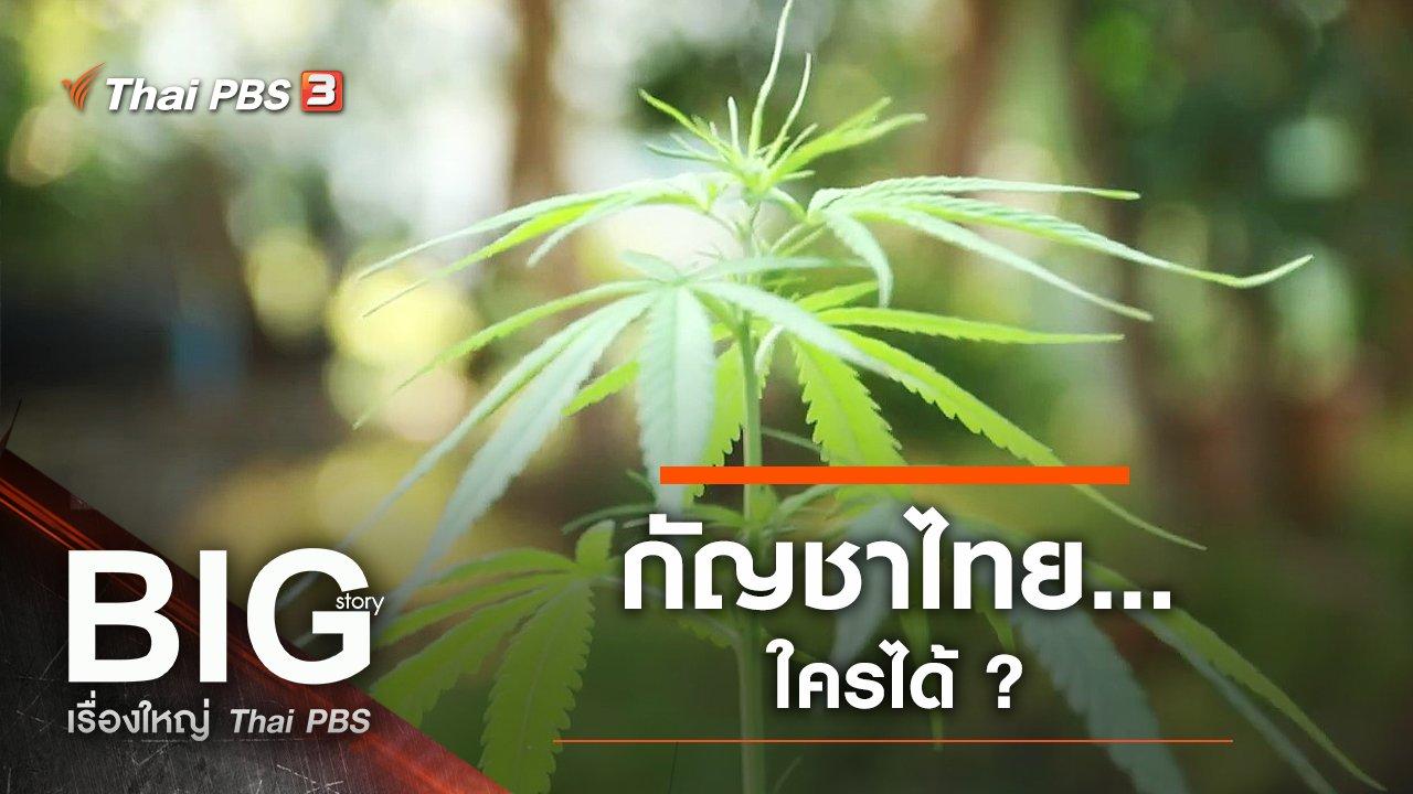 Big Story เรื่องใหญ่ Thai PBS - กัญชาไทย…ใครได้ ?