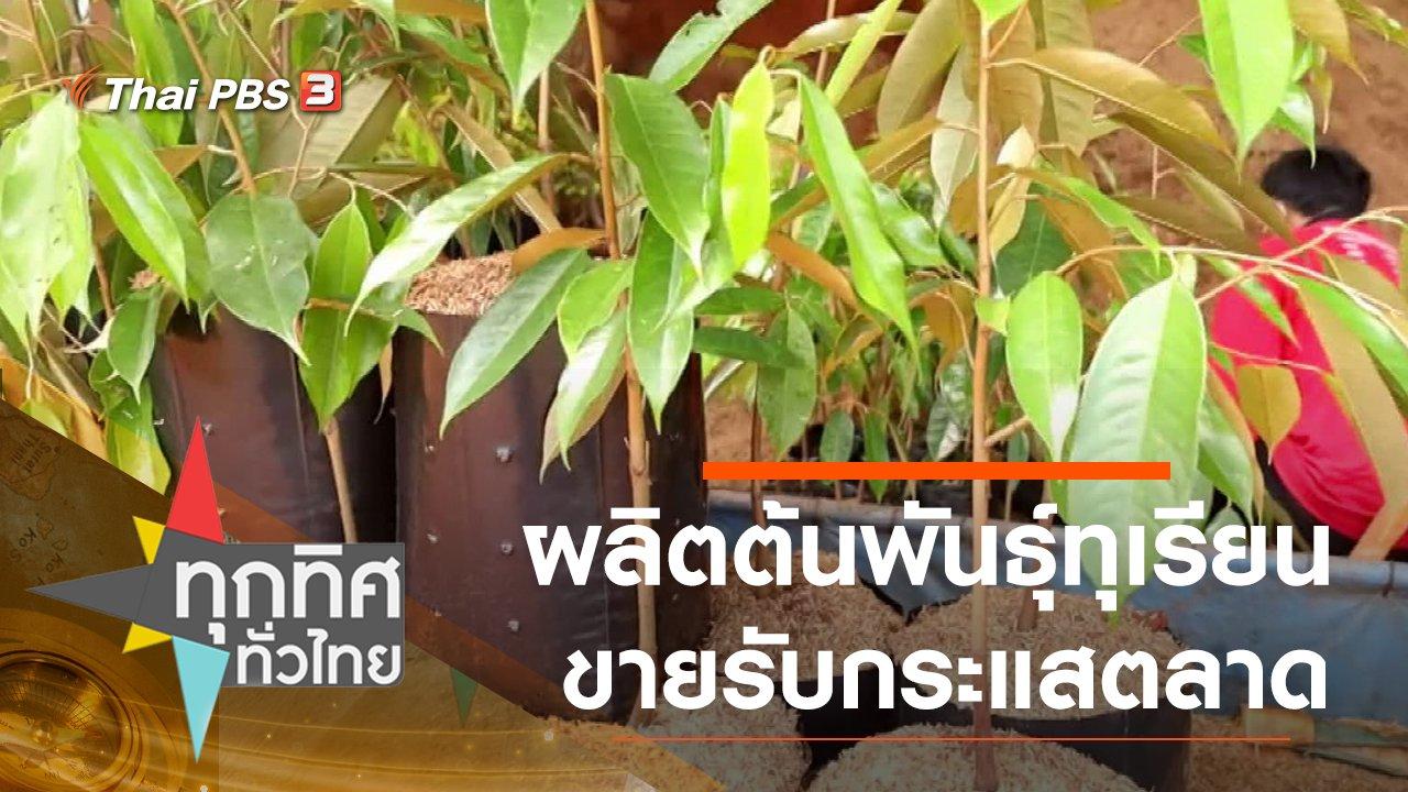 ทุกทิศทั่วไทย - ผลิตต้นพันธุ์ทุเรียนขายรับกระแสตลาด