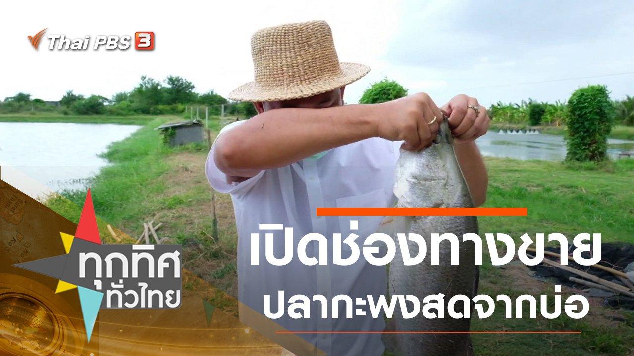 ทุกทิศทั่วไทย - เปิดช่องทางขายปลากะพงสดจากบ่อ