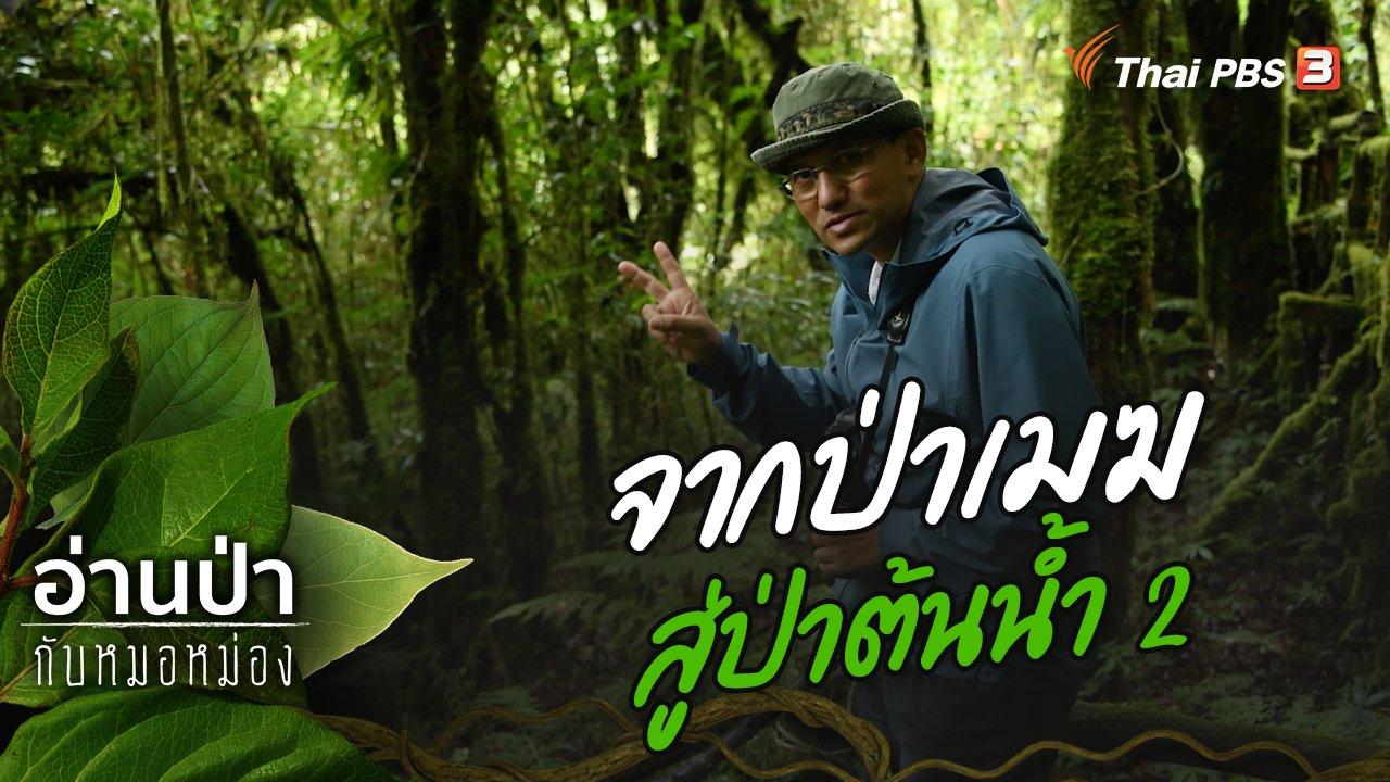 อ่านป่ากับหมอหม่อง - จากป่าเมฆสู่ป่าต้นน้ำ 2