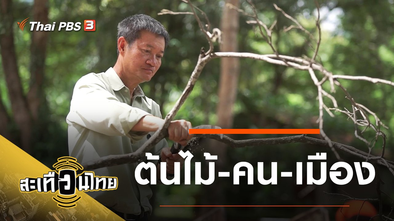 สะเทือนไทย - ต้นไม้-คน-เมือง