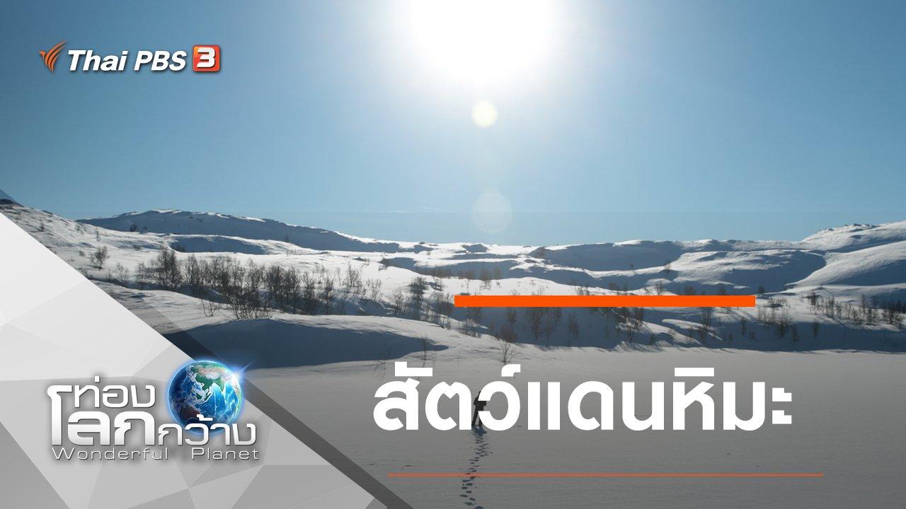 ท่องโลกกว้าง - สัตว์แดนหิมะ