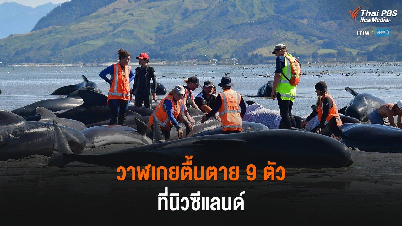 Around the World - วาฬเกยตื้นตาย 9 ตัว ที่นิวซีแลนด์