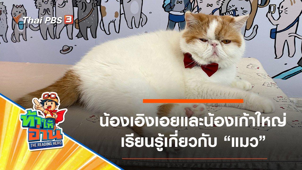 ท้าให้อ่าน The Reading Hero - แมว : น้องเอิงเอยและน้องเก้าใหญ่