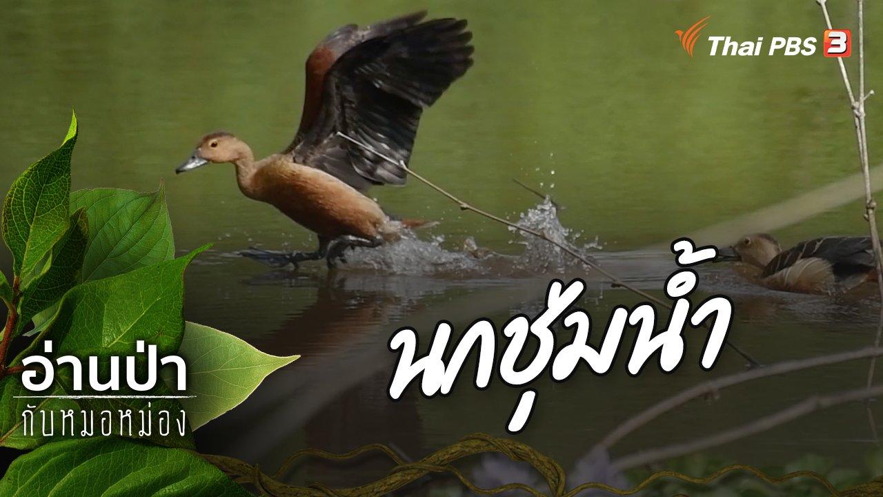 อ่านป่ากับหมอหม่อง - นกชุ่มน้ำ