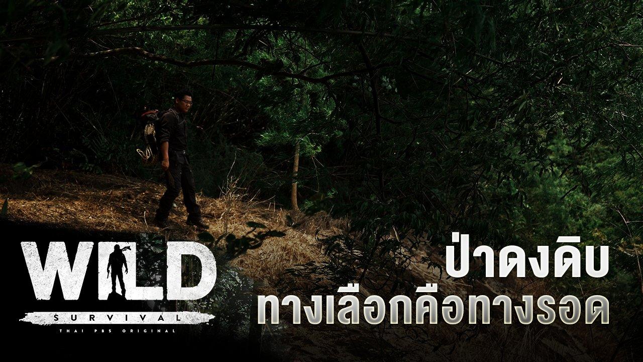 WILD SURVIVAL - ป่าดงดิบ ทางเลือกคือทางรอด