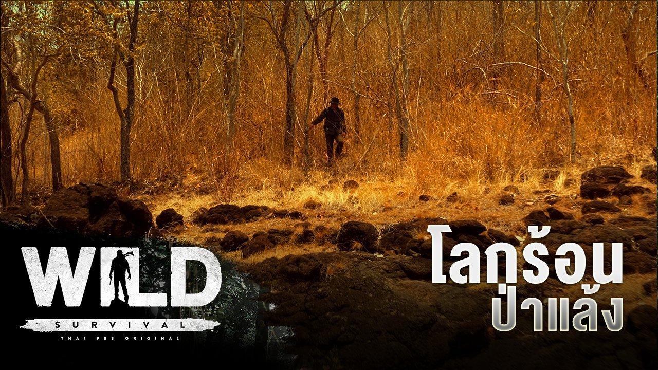 WILD SURVIVAL - โลกร้อน ป่าแล้ง