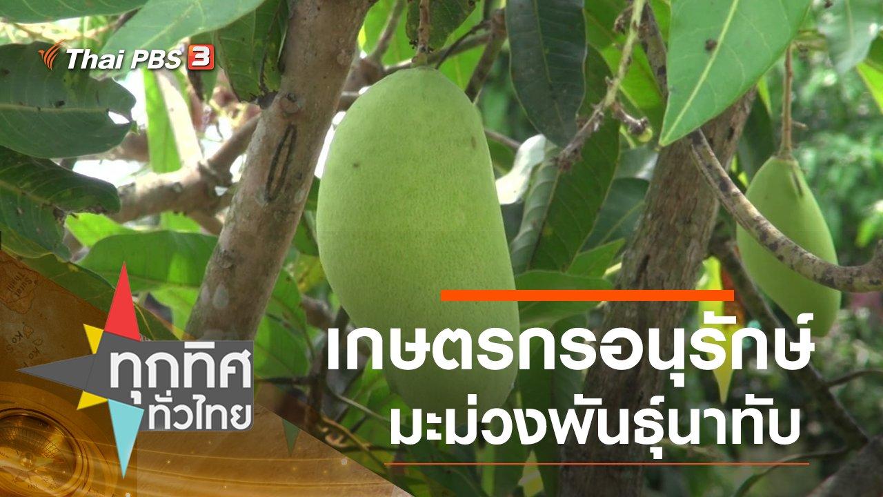 ทุกทิศทั่วไทย - เกษตรกรอนุรักษ์มะม่วงพันธุ์นาทับ จ.สงขลา