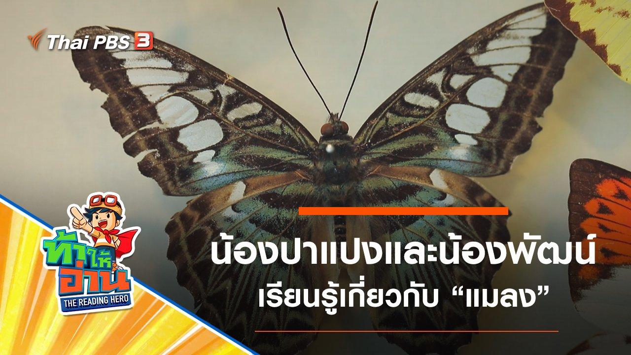 ท้าให้อ่าน The Reading Hero - แมลง : น้องปาแปงและน้องพัฒน์