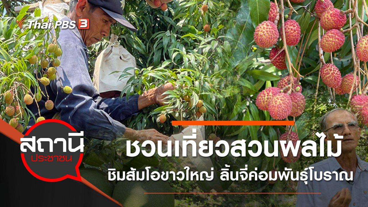 สถานีประชาชน - ชวนเที่ยวสวนผลไม้ ชิมส้มโอขาวใหญ่ ลิ้นจี่ค่อมพันธุ์โบราณ จ.สมุทรสงคราม