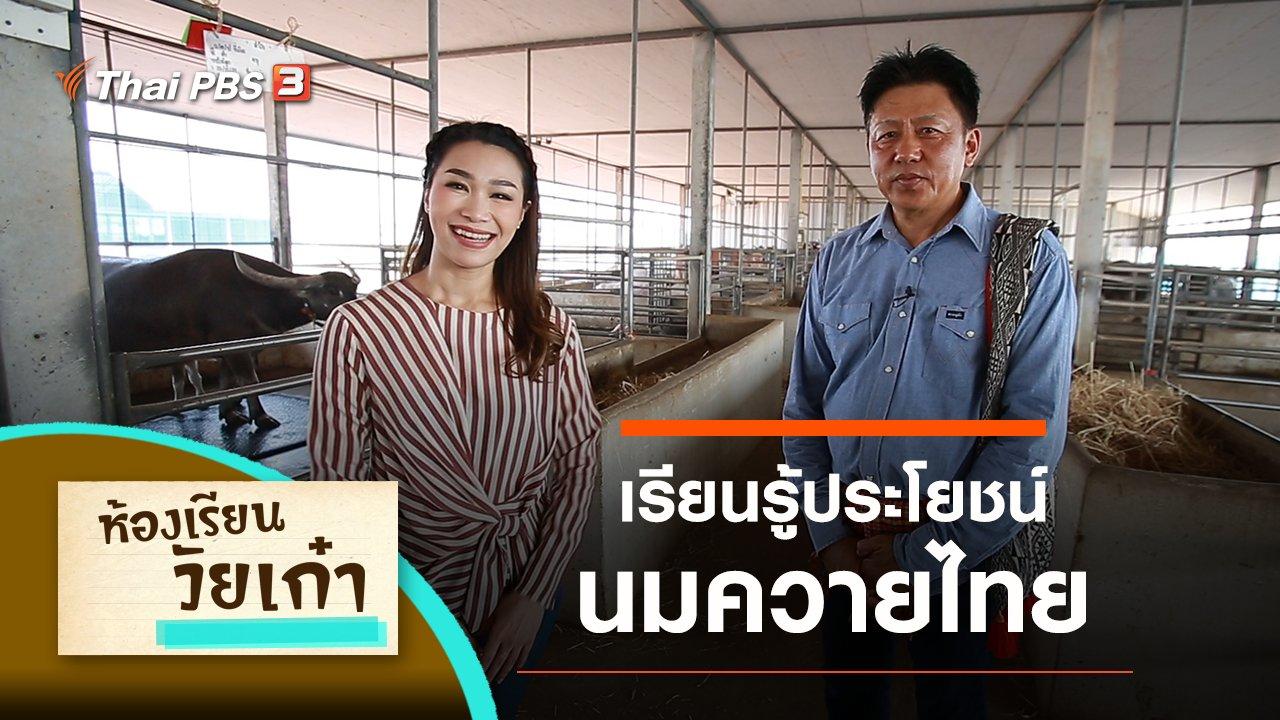ห้องเรียนวัยเก๋า - เรียนรู้ประโยชน์ของนมควายไทย