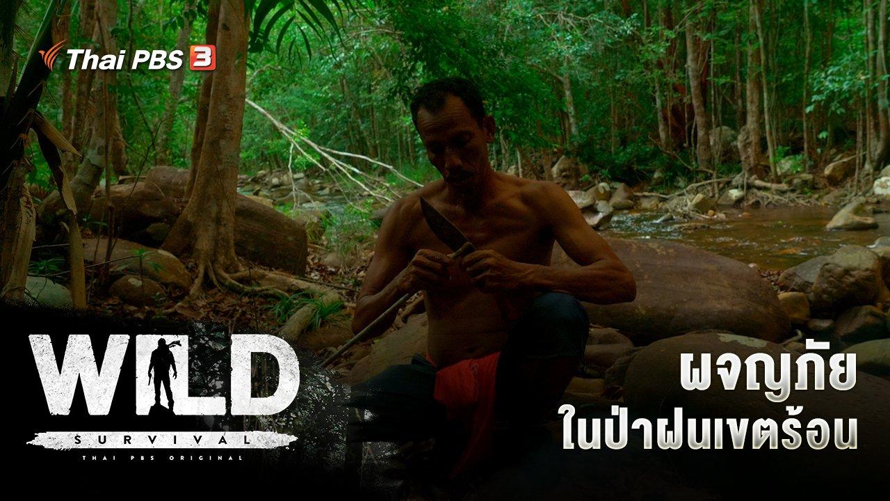 WILD SURVIVAL - ผจญภัยในป่าฝนเขตร้อน