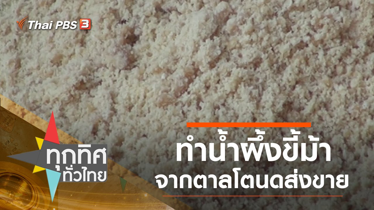 ทุกทิศทั่วไทย - ทำน้ำผึ้งขี้ม้าจากตาลโตนดขาย