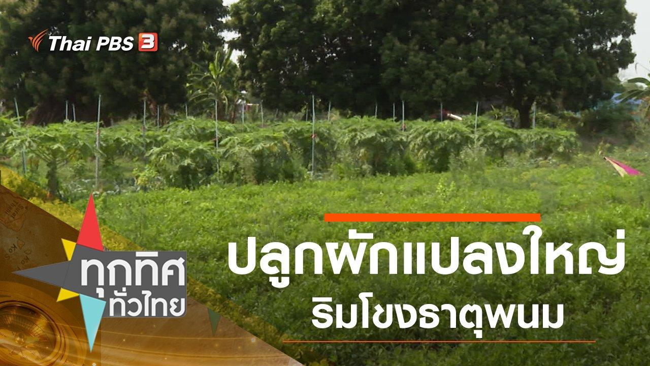 ทุกทิศทั่วไทย - ปลูกผักแปลงใหญ่ริมโขงธาตุพนม