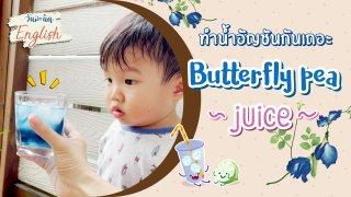 ทำน้ำอัญชันกันเถอะ (Butterfly pea juice)