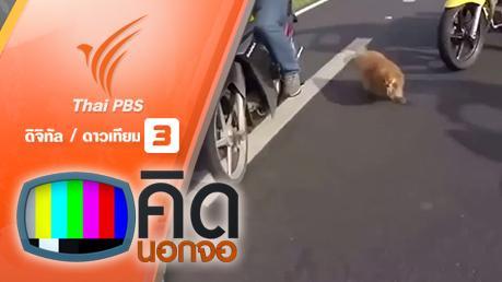 คิดนอกจอ - คิดนอกจอ : นักขี่มอเตอร์ไซค์ช่วยกันจับสุนัขบนถนน