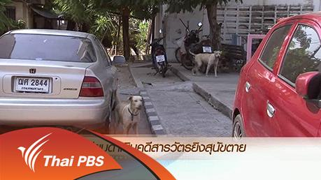 ข่าวค่ำ มิติใหม่ทั่วไทย - ประเด็นข่าว (10 เม.ย. 59)