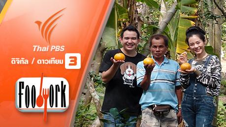 Foodwork - ส้มแก้ว