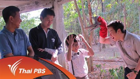 Animals Speak - นกกระเรียนไทย
