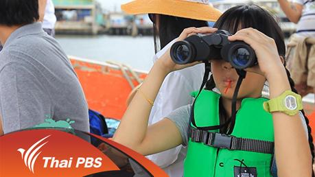 Nature Spy สายลับธรรมชาติ - วาฬบรูดาในอ่าวไทย