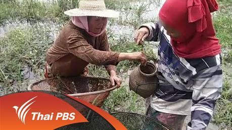 ทุกทิศทั่วไทย - ประเด็นข่าว (2 ก.พ. 59)