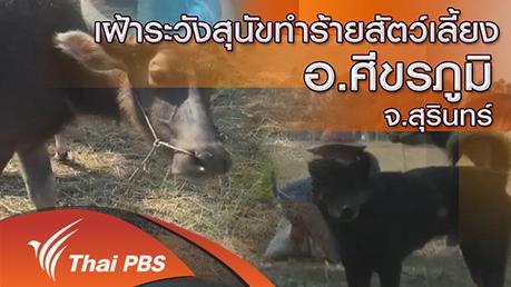 ร้องทุก(ข์) ลงป้ายนี้ - เฝ้าระวังสุนัขทำร้ายสัตว์เลี้ยง อ.ศีขรภูมิ จ.สุรินทร์