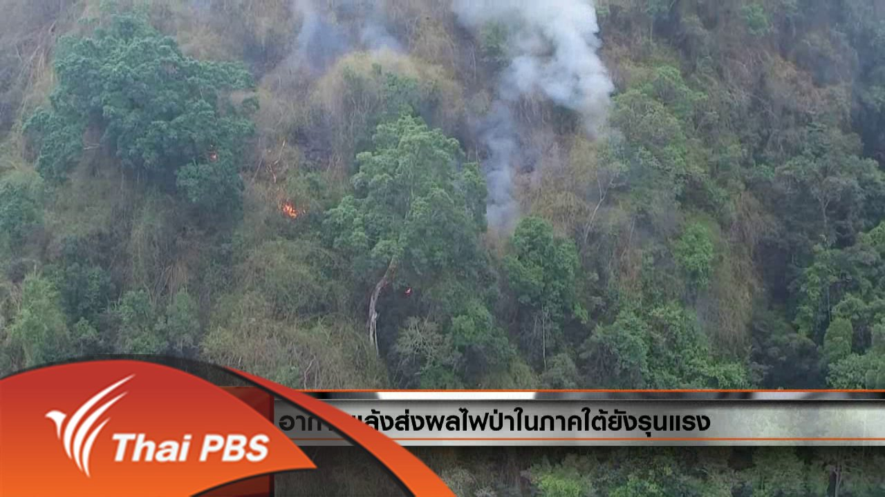 วันใหม่  ไทยพีบีเอส - ประเด็นข่าว (11 พ.ค. 59)