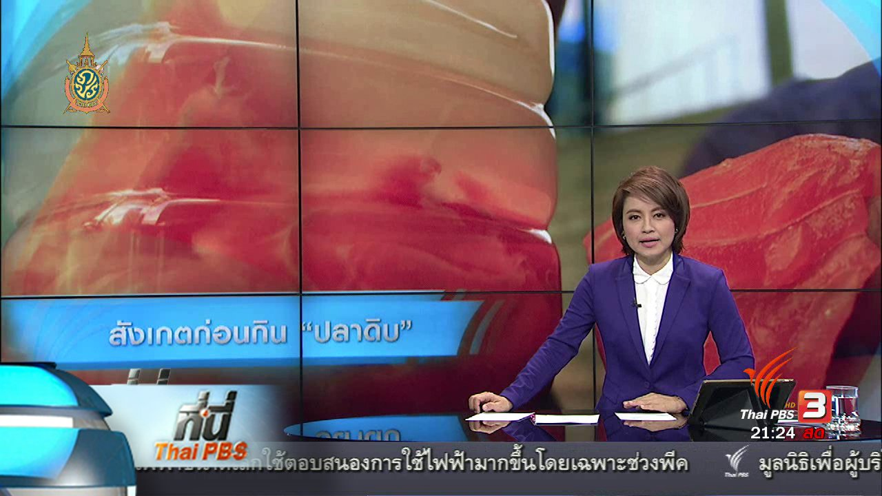 """ที่นี่ Thai PBS - ที่นี่ Thai PBS  : หาสารปนเปื้อน """"ปลาดิบ"""" ต้องตรวจในห้องแล็บ"""