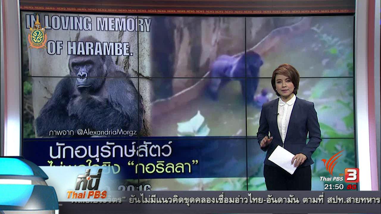ที่นี่ Thai PBS - ที่นี่ Thai PBS : โซเชียลมีเดีย ลงชื่อกว่า 60,000 รายชื่อ ขอความยุติธรรมให้กอริลล่าที่ถูกยิง