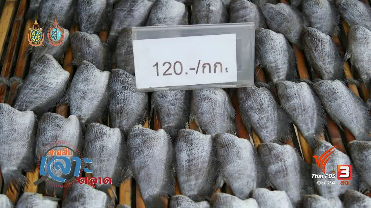 วันใหม่  ไทยพีบีเอส - สายสืบเจาะตลาด : ราคาปลาสลิด อ.บางบ่อ จ.สมุทรปราการ