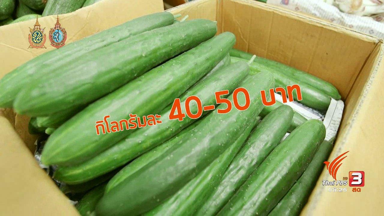 วันใหม่  ไทยพีบีเอส - สายสืบเจาะตลาด :  สำรวจราคาผัก ปากคลองตลาด