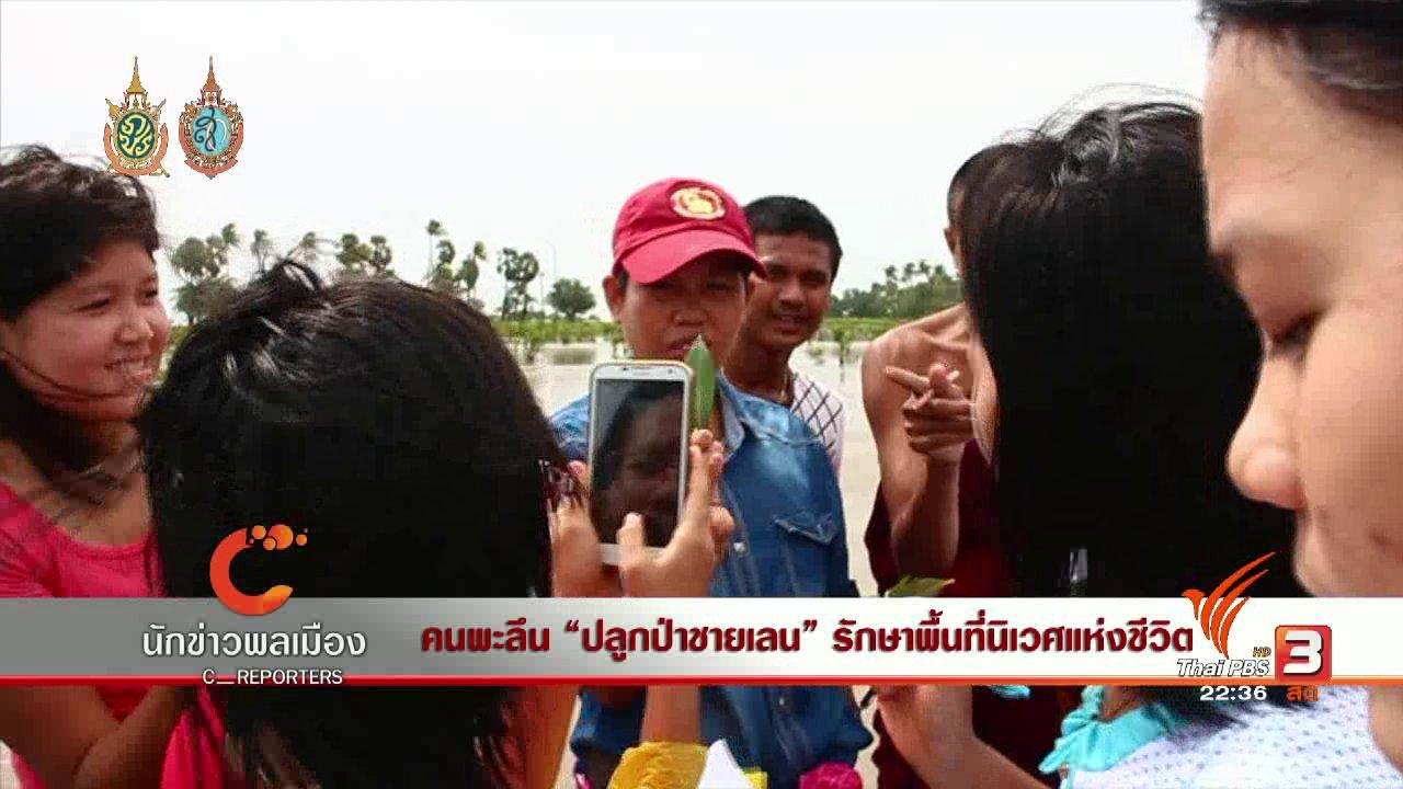 """ที่นี่ Thai PBS - นักข่าวพลเมือง : คนพะลึน """"ปลูกป่าชายเลน"""" รักษาพื้นที่นิเวศแห่งชีวิต"""