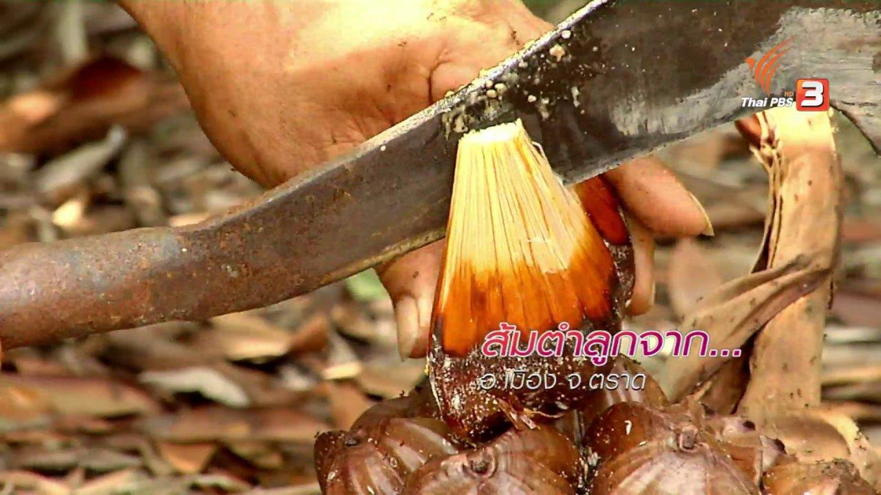 ข่าวค่ำ มิติใหม่ทั่วไทย - ตะลุยทั่วไทย : ส้มตำลูกจาก