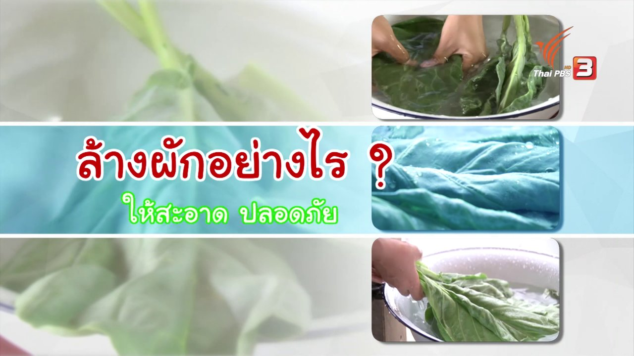หม้อข้าวหม้อแกง - ล้างผักอย่างไร ให้สะอาด ปลอดภัย