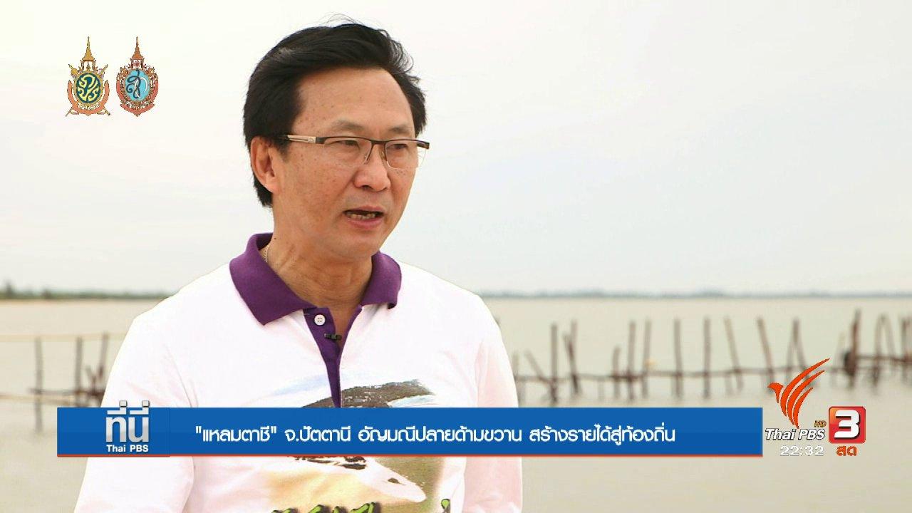 """ที่นี่ Thai PBS - Social Talk : """"แหลมตาชี"""" จ.ปัตตานี อัญมณีแห่งปลายด้ามขวาน"""