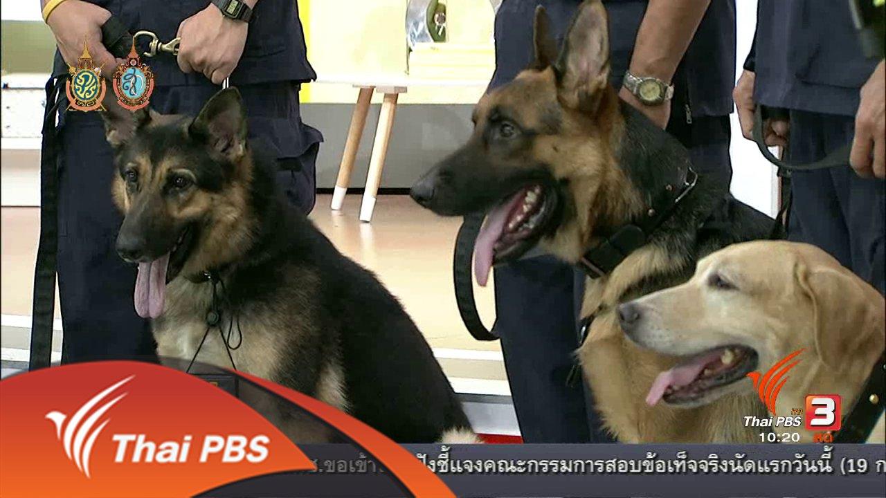 นารีกระจ่าง - Talk : สุนัขตำรวจติดยศ กับภารกิจเพื่อชาติ