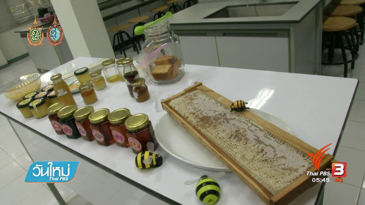 วันใหม่  ไทยพีบีเอส - 108 สุขภาพ : น้ำผึ้ง ยาอายุวัฒนะจากธรรมชาติ