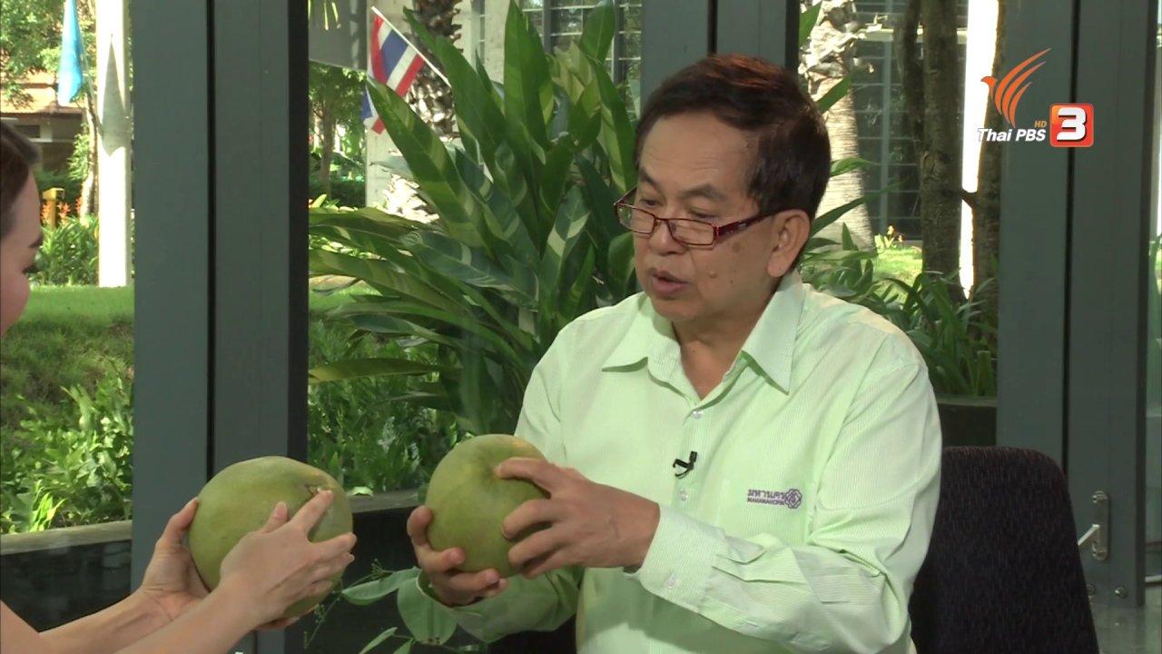 คนสู้โรค - วิธีเลือก และประโยชน์ของส้มโอ