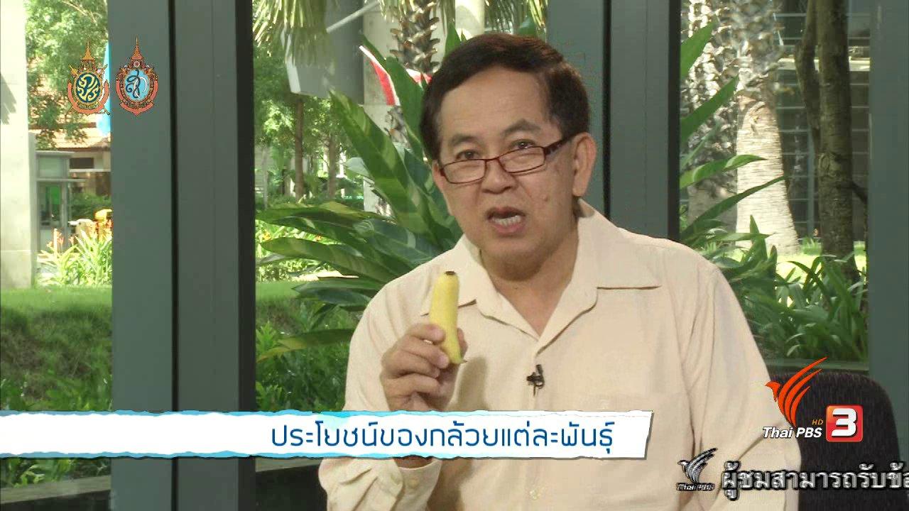 คนสู้โรค - ประโยชน์ของกล้วยแต่ละพันธุ์
