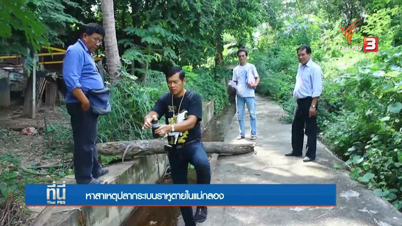 ที่นี่ Thai PBS - ประเด็นข่าว (7 ต.ค. 59)